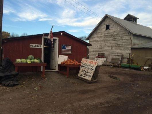 Self Serve Farm Stand