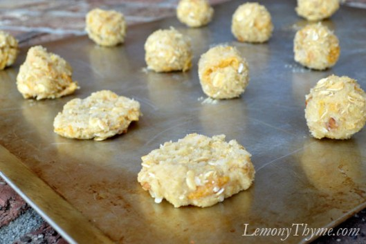 Oatmeal Cookies Dough