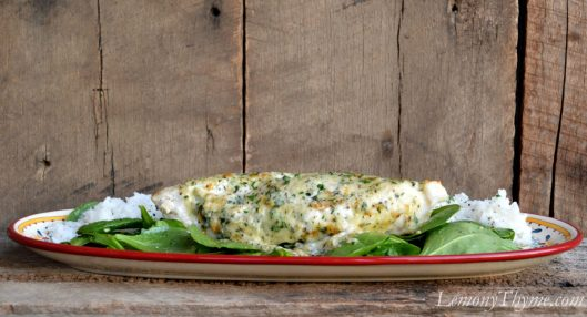 Parmesan & Herb Broiled Grouper3