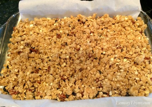 Blueberry Pecan Crumble Bars6