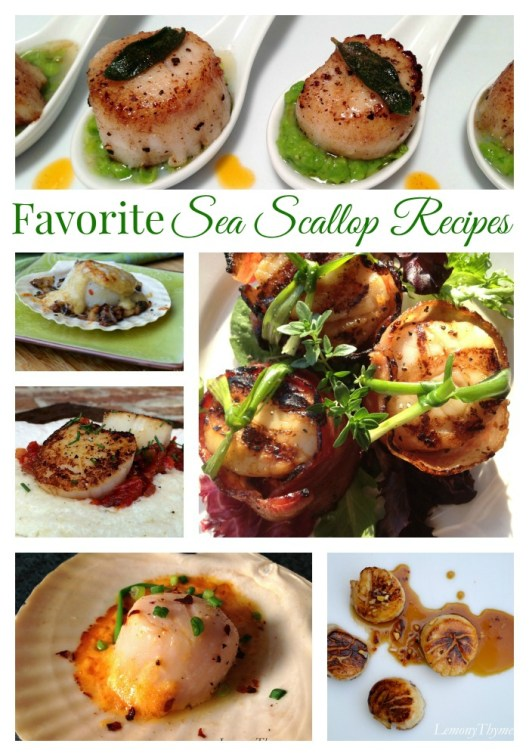 Favorite Sea Scallop Recipes