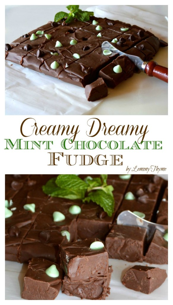Creamy Dreamy Mint Chocolate Fudge | LemonyThyme.com | #adventuresinchocolate