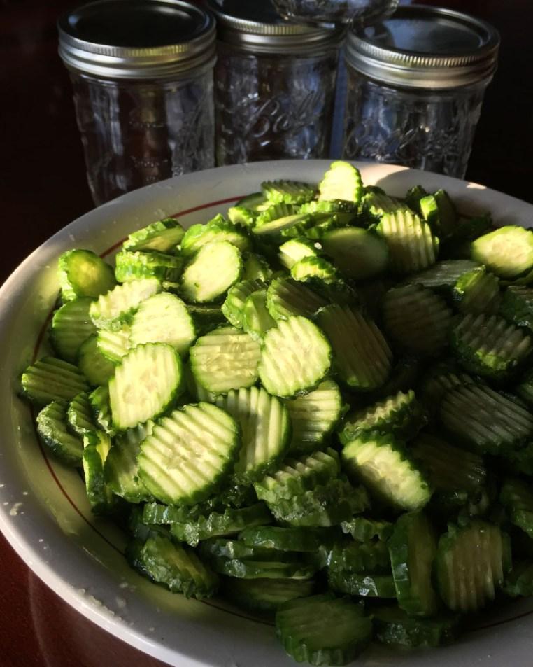 Easy Bread & Butter Pickles1