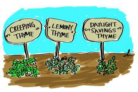 Daylight Savings Thyme