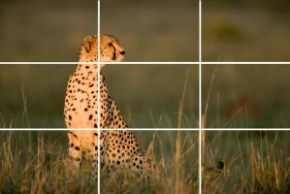 Composition Rule of Thirds
