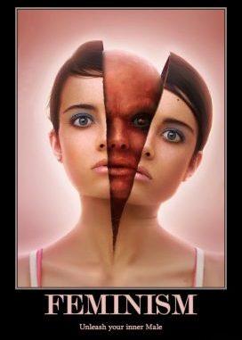 feminism demotivational poster