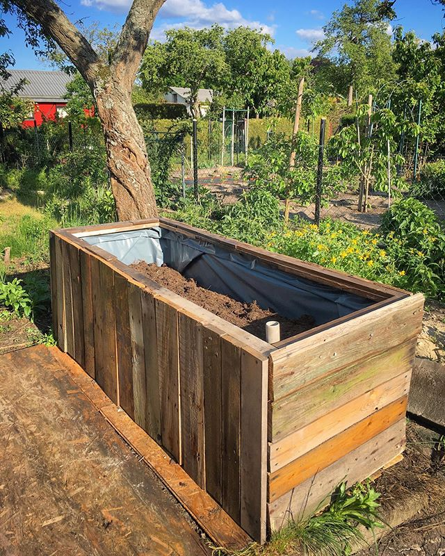 Sub-irrigated planter half filled with compost