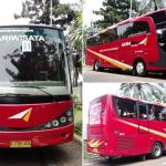 Bus Pariwisata Jakarta - Agra Mas