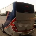 Bus Pariwisata Trac - Back View
