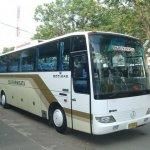 Bus Pariwisata Desiana