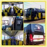 Bus Pariwisata seat 59 Beebuzz