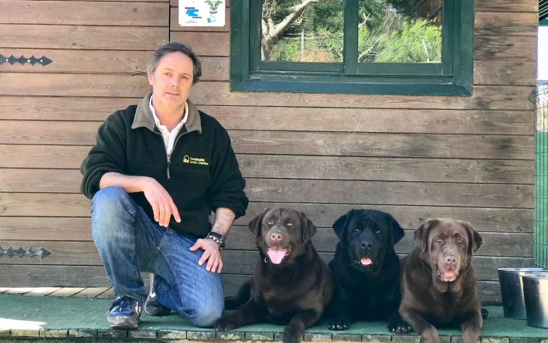 ¿Por qué sufren los perros al quedarse solos? Juan Freire, director del hotel canino y centro de educación Ramalladas, responde