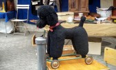 A poodle with wheels. A whoodle, maybe?