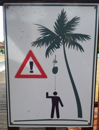 Beware of the coconuts