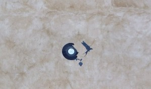 A house wall with a bird cut out from a vinyl disk right next to the disk it was cut from