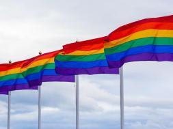 bandeira-do-orgulho-lgbtqi