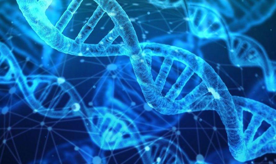 ¿Es posible obtener coactivamente prueba de ADN?