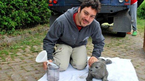Bezoek Amir Sayadshirazi, directeur van Caspian Seal Conservation Center