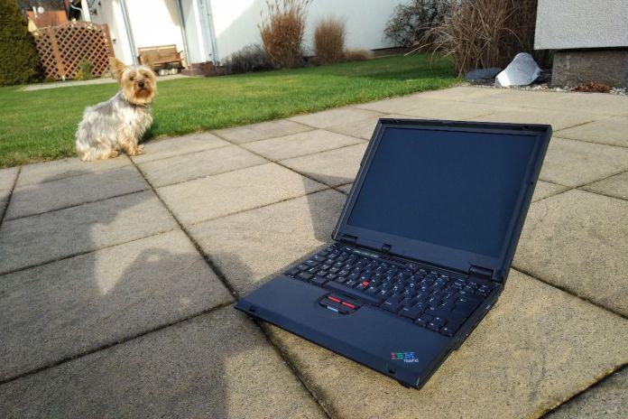 IBM ThinkPad A21e with dog 1