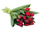 Darček na Valentína z Tesca