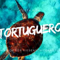 Tortuguero - Tipps und Erfahrungen zum Reich der Riesenschildkröten