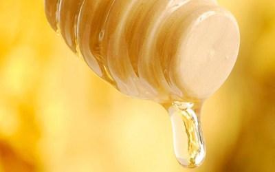 Honigtropfen auf einem Honiglˆffel