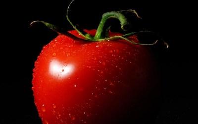 Eine Tomate