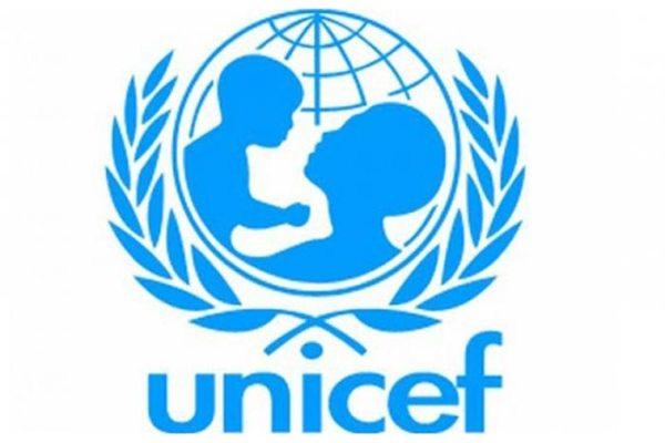 Struktur Organisasi UNICEF