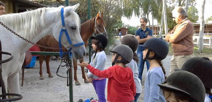 Compleanno con i pony