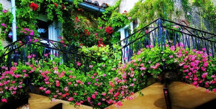 Balconi fioriti - le piante di primavera - Le Nuove Mamme