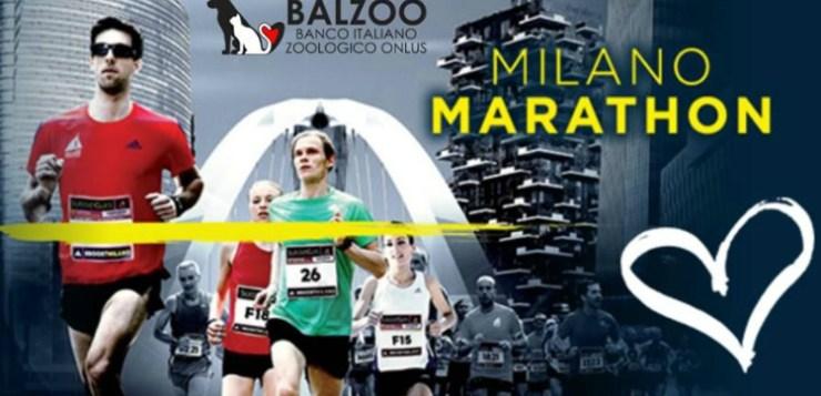 Milano Marathon: #Run4Balzoo, Banco Italiano Zoologico