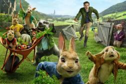 peter rabbit il film