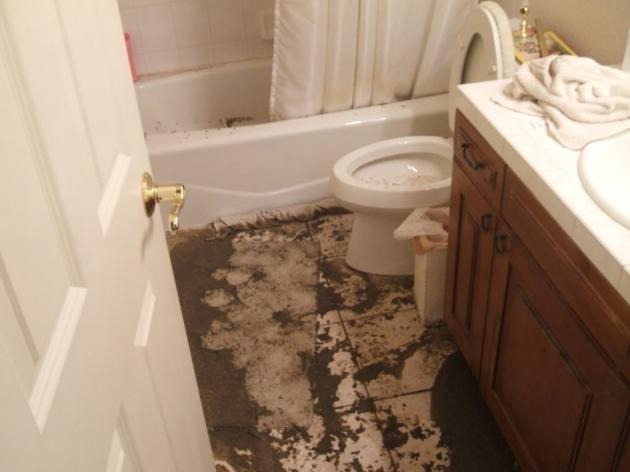 Bathtub Backed Up Bathtub Designs