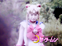 Pretty Guardian Sailormoon: Final Act (PGSM 49)