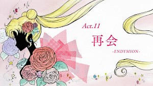 Sailor Moon Crystal: Act 11, Reunion, Endymion