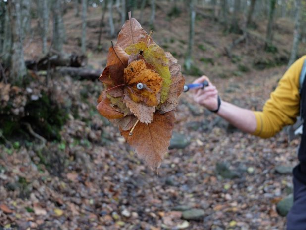 Tappeto di soffici foglie