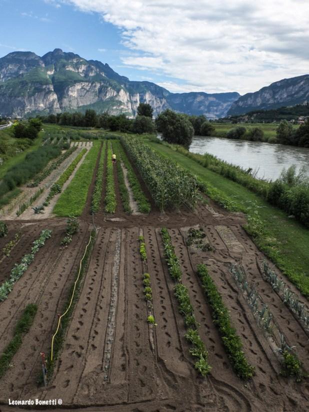 Gli orti più belli del Trentino Alto Adige