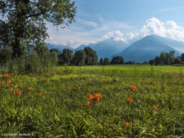 La Valtellina si affaccia sul lago di Como in tutta la sua bellezza