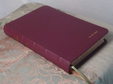 Deep Red Soft-Tanned Goatskin Bible