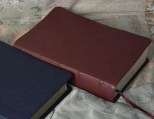 Crimson River Grain Goatskin Bible