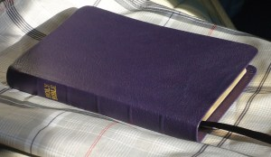 Dark Purple River Grain Goatskin Bible