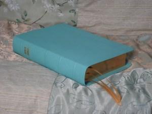 Robin Egg River Grain Goatskin Bible