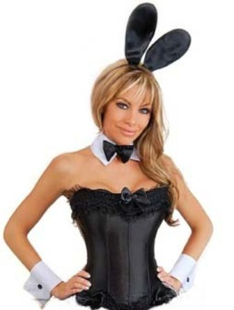 Plus size playboy bunny corset costume