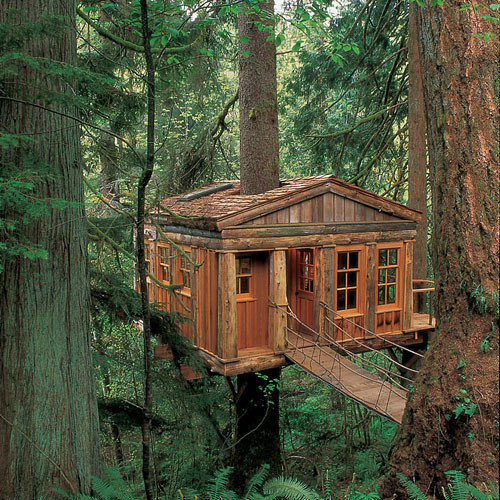 Temple of the Moon Treehouse Lodge, Seattle, Washington — Danee Cook