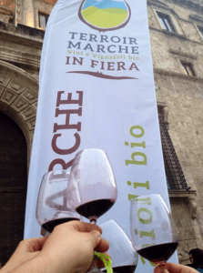 Terroir Marche in fiera
