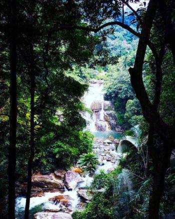 Nature sauvage, avec cascade et forêt luxuriante.