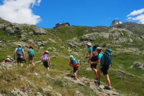 Natuur sport vakantie in de bergen en de bossen. Veerl verschillende activiteiten dichtbij de gites