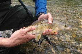 vacances nature et pêcher dans la rivière le Touyre bien connue