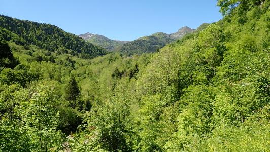 vakantiehuis-Pyreneeën-La-Benestante.jpg