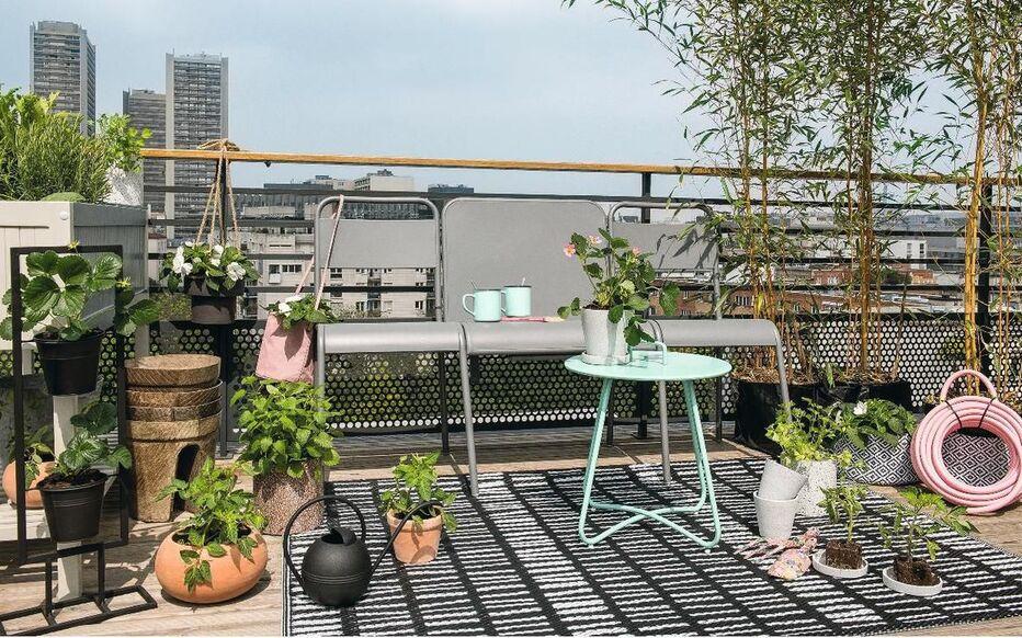 cultivons notre balcon
